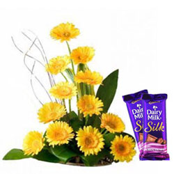 Delectable Dairy Milk Silk with Mixed Gerberas Arrangement