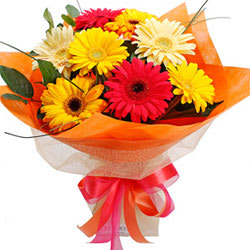 Magnificent Mix N Match 10 Gerberas Arrangement
