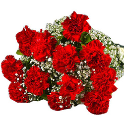 Order for a blossoming Hand Bunch of Red Carnations