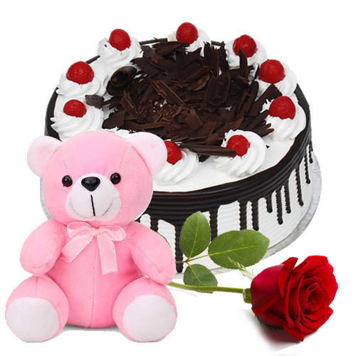 Yummy Black Forest Cake with Single Rose N Teddy
