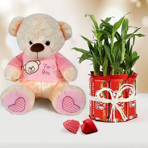 Exquisite Propose Day Combo of Teddy with Chocolate n Lucky Bamboo