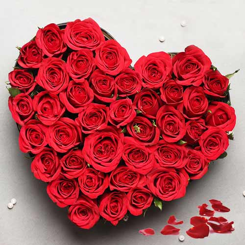 Divine Heart-shaped Arrangement of 24 Roses in Red