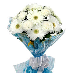 Ravishing White Gerberas Bunch with Fillers