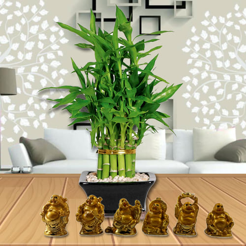 Exquisite 2 Tier Bamboo Plant with Set of Laughing Buddha