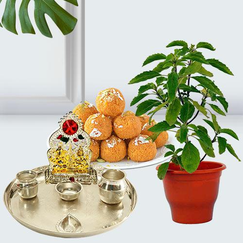 Classic Holy Basil Plant Pot with Festive Greetings